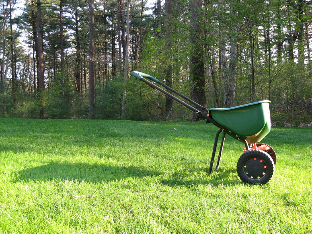 Why you should have Extreme Green start fertilizing your lawn: